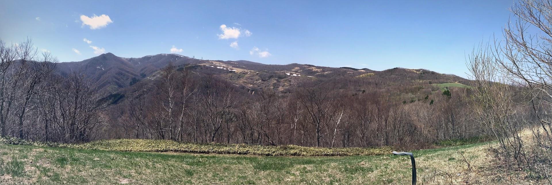 亀ヶ森山頂付近